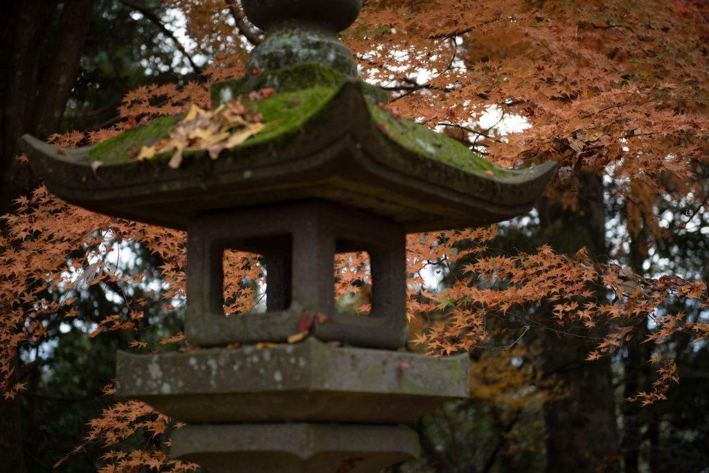 2018-12-07 日本九州自由行 - 日田 日隈神社