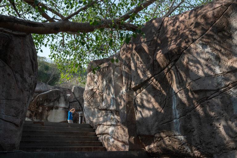 2021-03-13 印象.高雄 壽山動物園